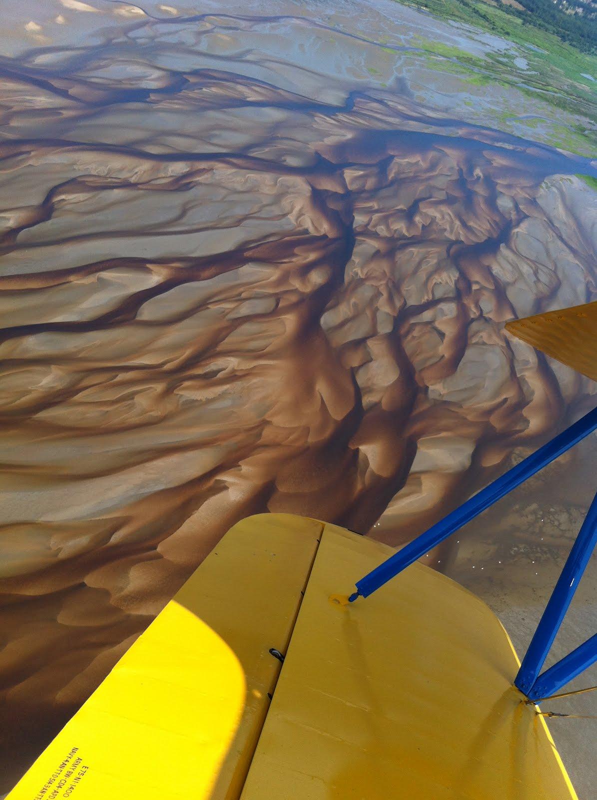 Delta de la Leyre ou la petite Amazonie
