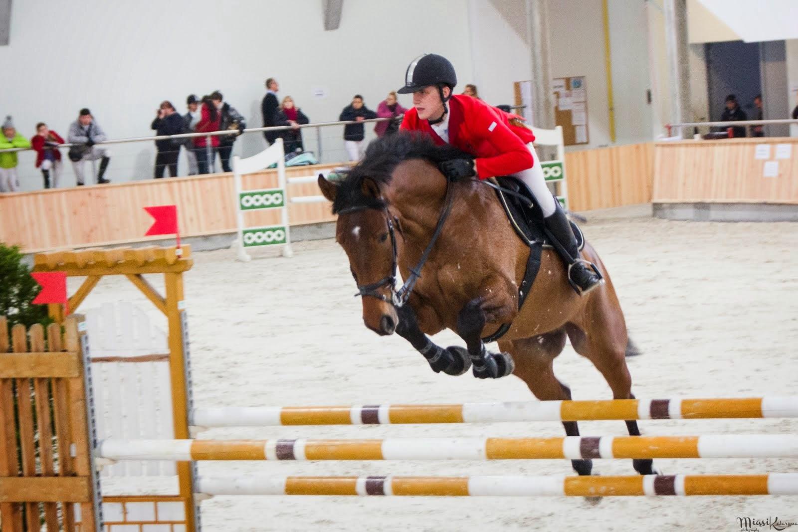 Zawody konne, marzec 2014