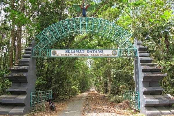 Pintu gerbang Taman Nasional Alas Purwo, Banyuwangi.