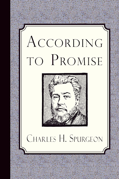 http://www.amazon.com/According-Promise-Method-Dealing-Chosen/dp/1935626833/?tag=curiosmith0cb-20