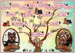 Árbol Genealógico de Kyra