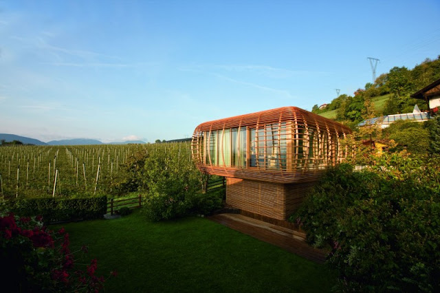 Brown Wooden Outer Cage and Vast Garden Filled with Green Grass