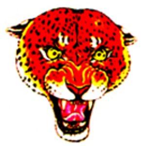 Black Animals tattoo Lions Leopard