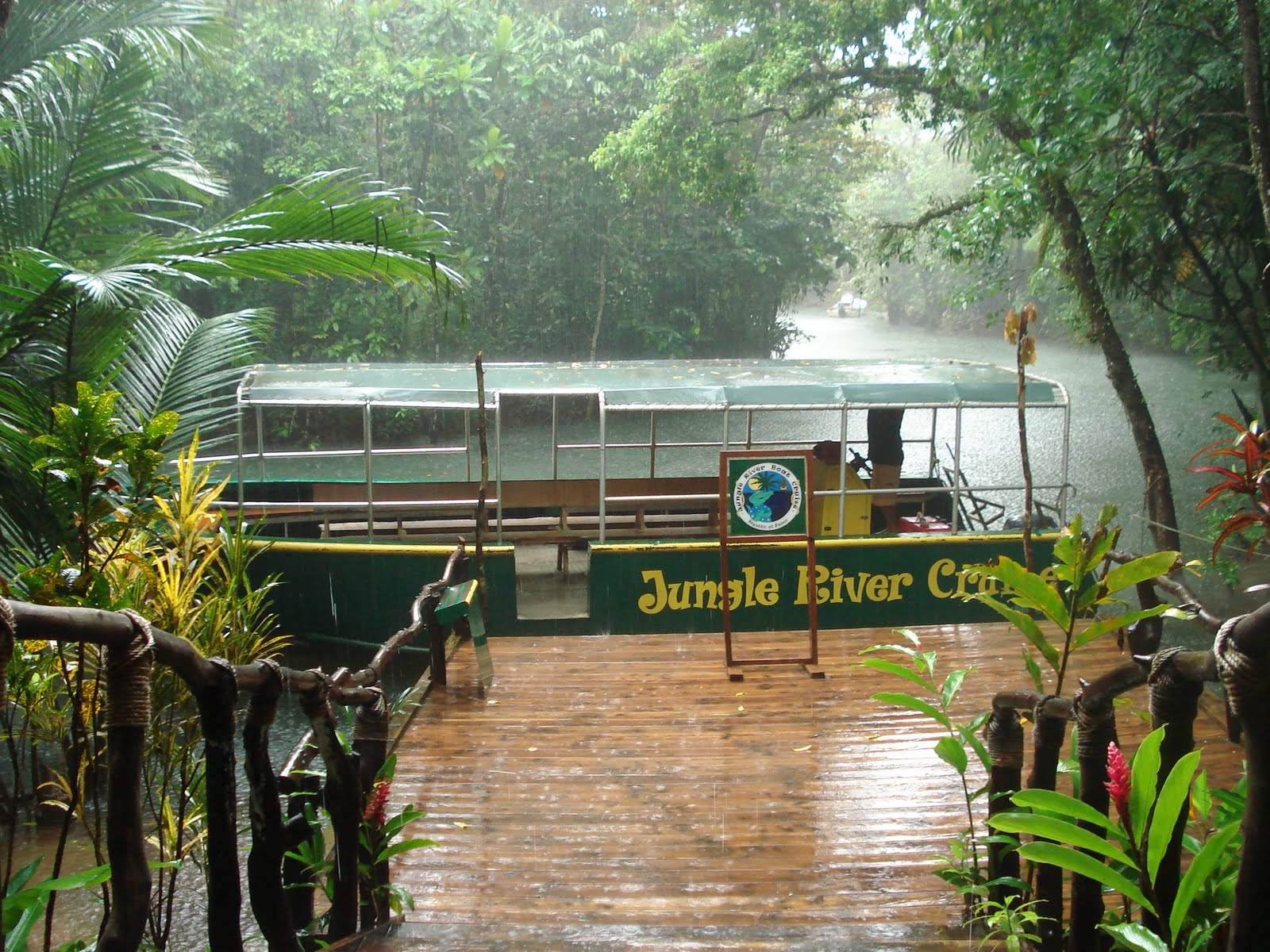 River boat jungle cruise located in ngchesar state the jungle river