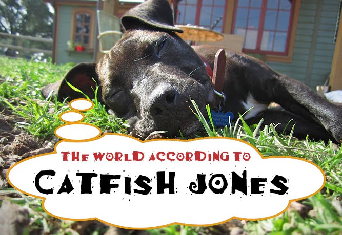 the world according to catfish jones