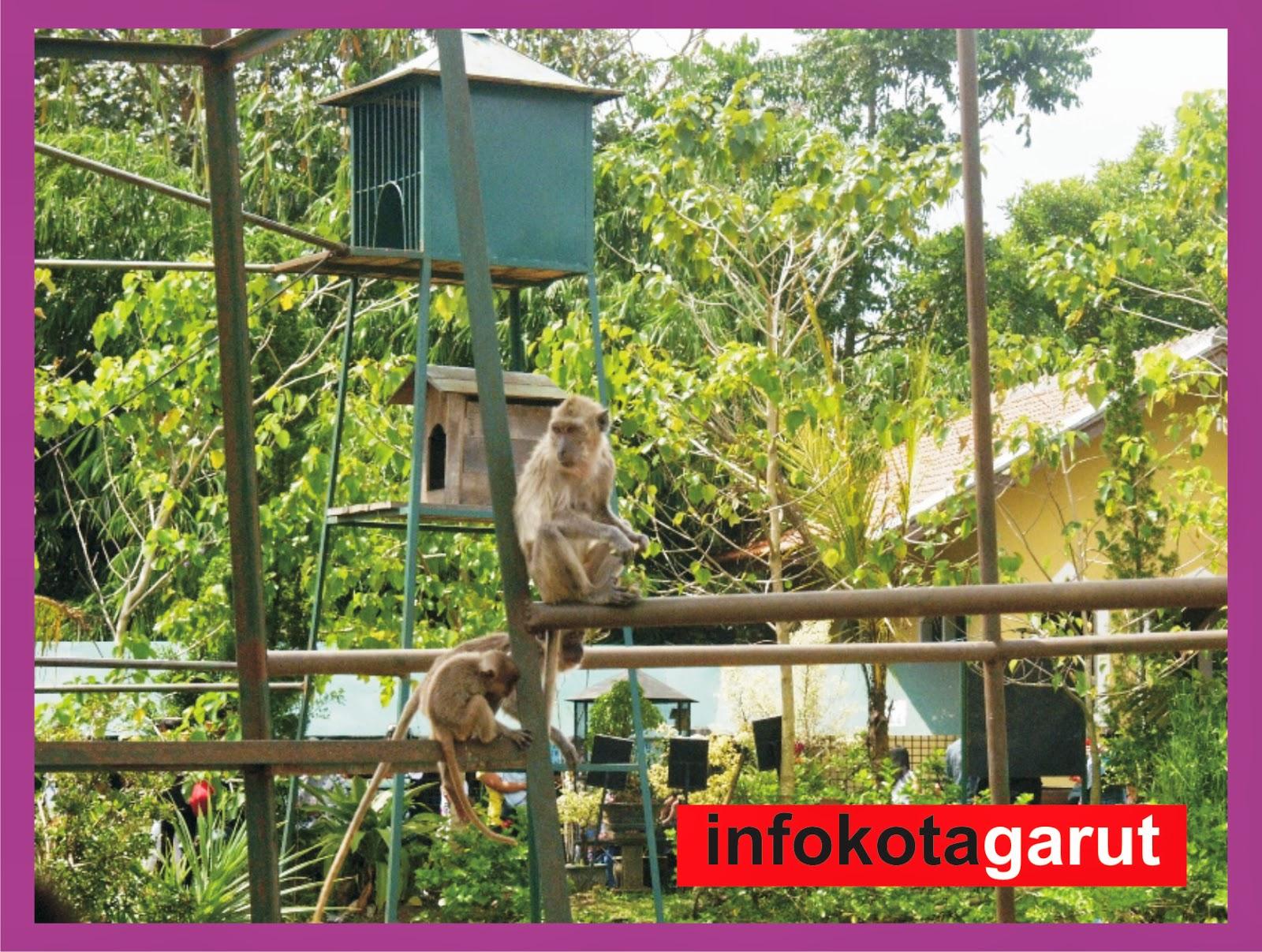infokotagarut.blogspot.com