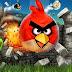 تحميل لعبة الطيور الغاضبة 2014 للكمبيوتر game angry birds