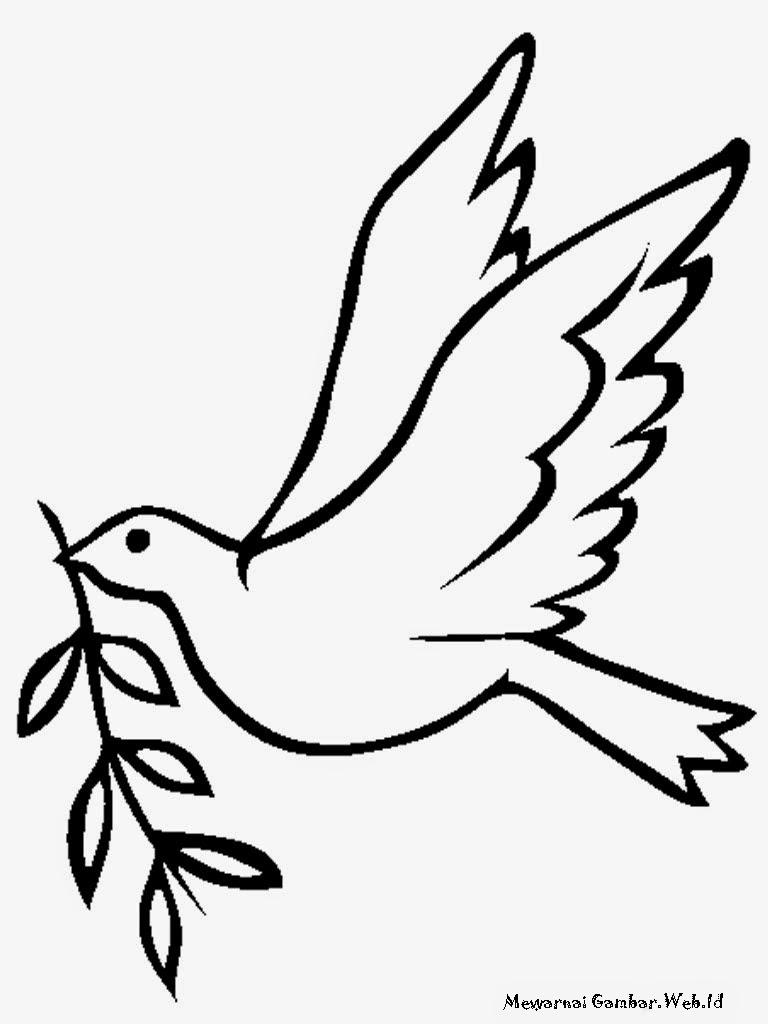 Gambar Burung Merpati Akan Membuat Sarang
