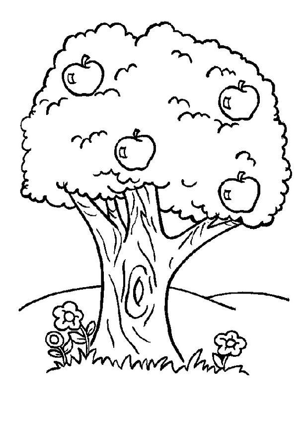 Boyama etkinlikleri bitkiler 1