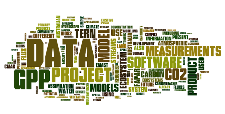 AP28 - Primary Production in Space and Time from a Wordle perspective