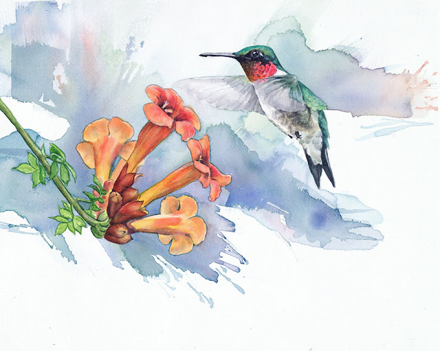 birds watercolor paintings