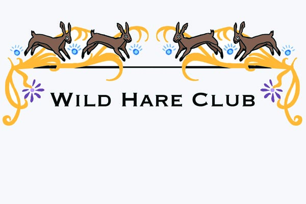 Wild Hare Club: Hosting one-off events in and around Hereford since 2005 for the thrill of it