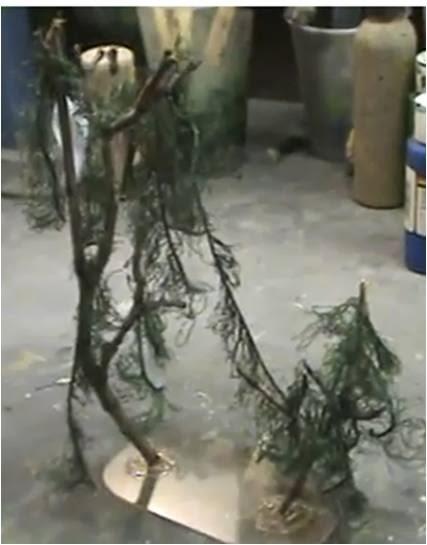 Cómo construir árboles de los pantanos
