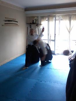 Aikido en Budoshin