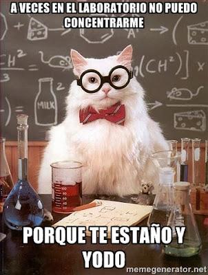 meme gato químico estaño yodo