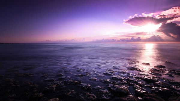 Purple Seascape Beach