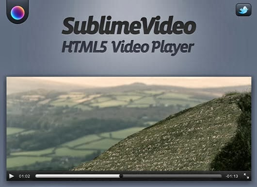 The State of Video on the Web