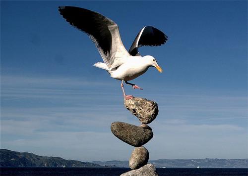 Cogli l'attimo fuggente per non perdere l'equilibrio