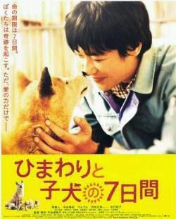 Bảy Ngày Của Mẹ Con Himawari - Himawari To Koinu No Nanokakan
