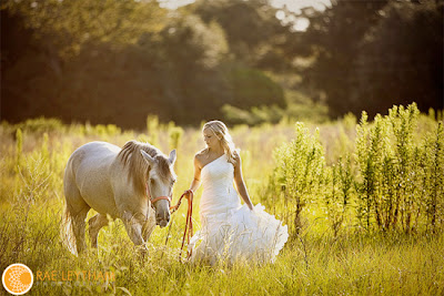 Bride and Horse in Yellow Field