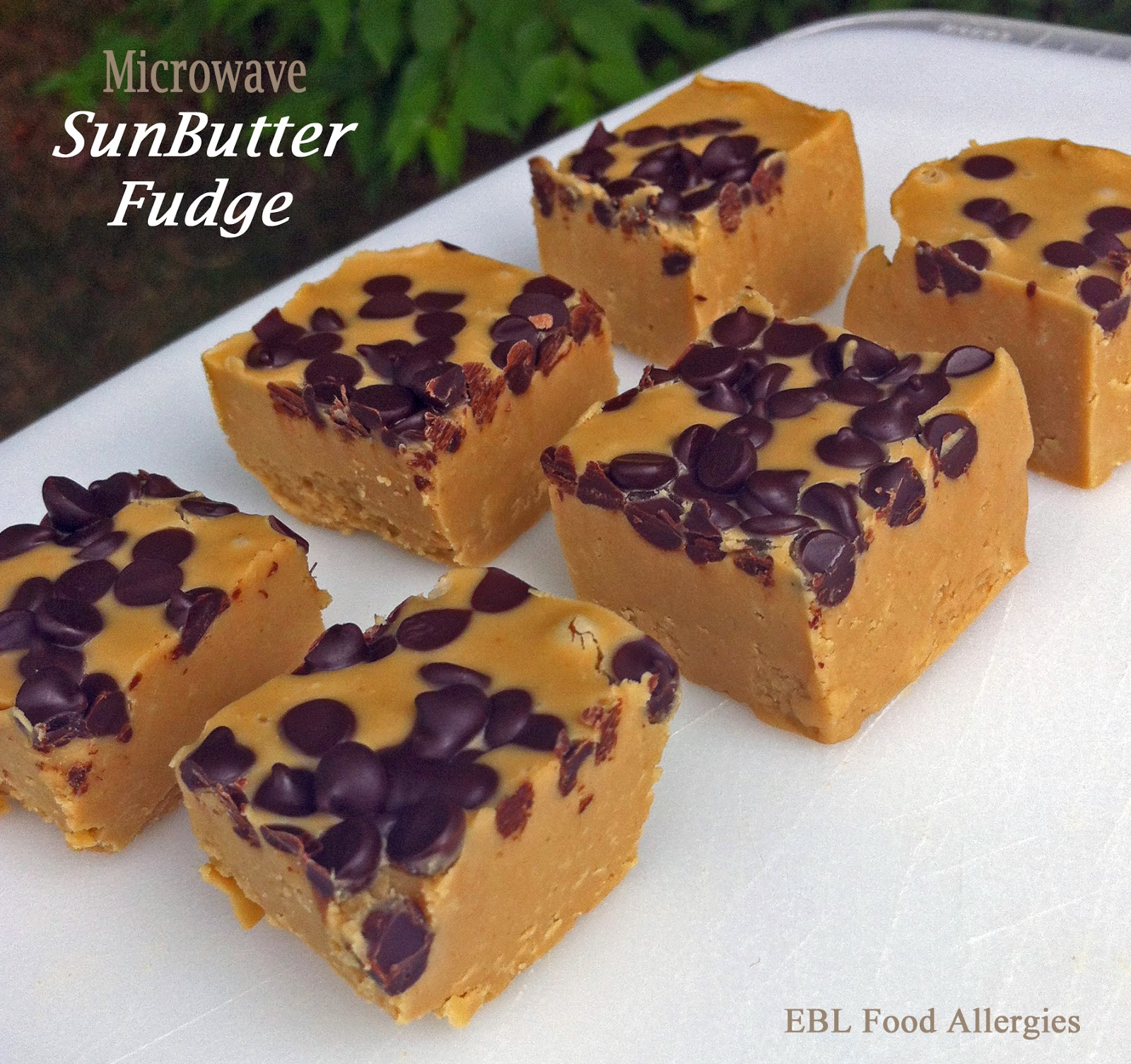 Allergy-Friendly Microwave SunButter Fudge - EBL Food Allergies