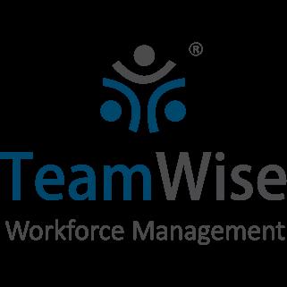 TeamWise-Logo