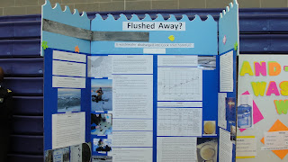 Future alaskans in fisheries marine science 2011 state wide the alaska cosee centers for ocean sciences education excellence ocean science fair took place at the same time as a fair within a fair for projects sciox Image collections