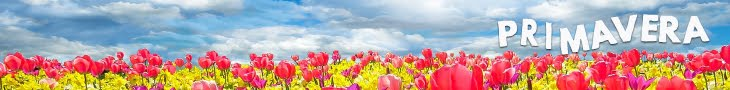 Huele a flores