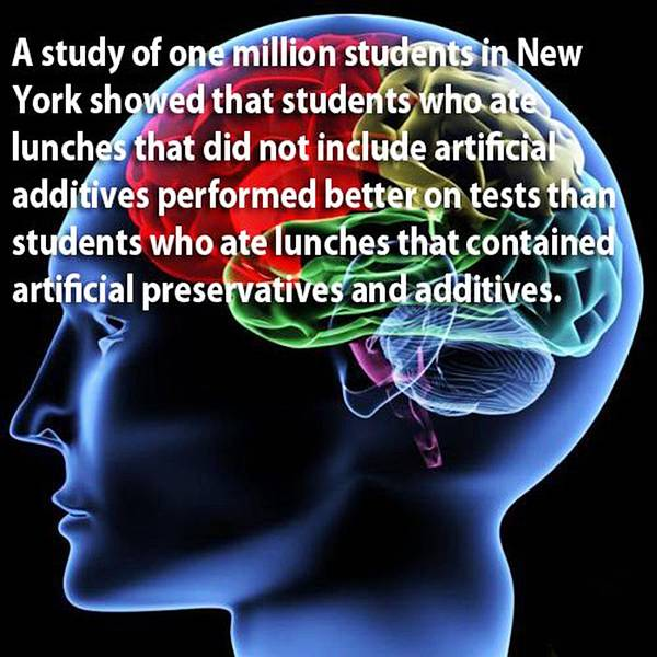 Collections know your brain interesting facts about brain
