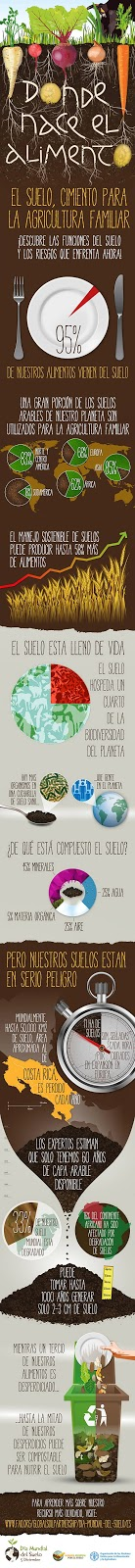 Infografía que describe las funciones del suelo y los riesgos a los que se enfrenta.