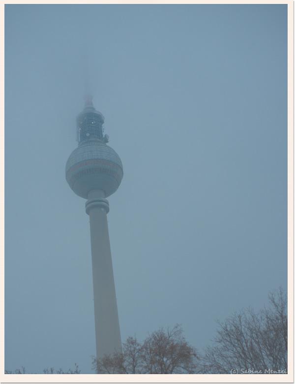 Psynopsis Berlin Alexanderplatz