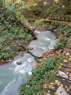 Hot little stream in forest at norboribetsu-onsen near the foot bathing area with a boardwalk with autumn leaves on it and a branch and stone in the stream