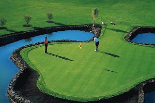 Amarilla Golf Campeonato Tenerife Pitch & Putt