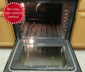 Non-Toxic-Oven-Cleaning