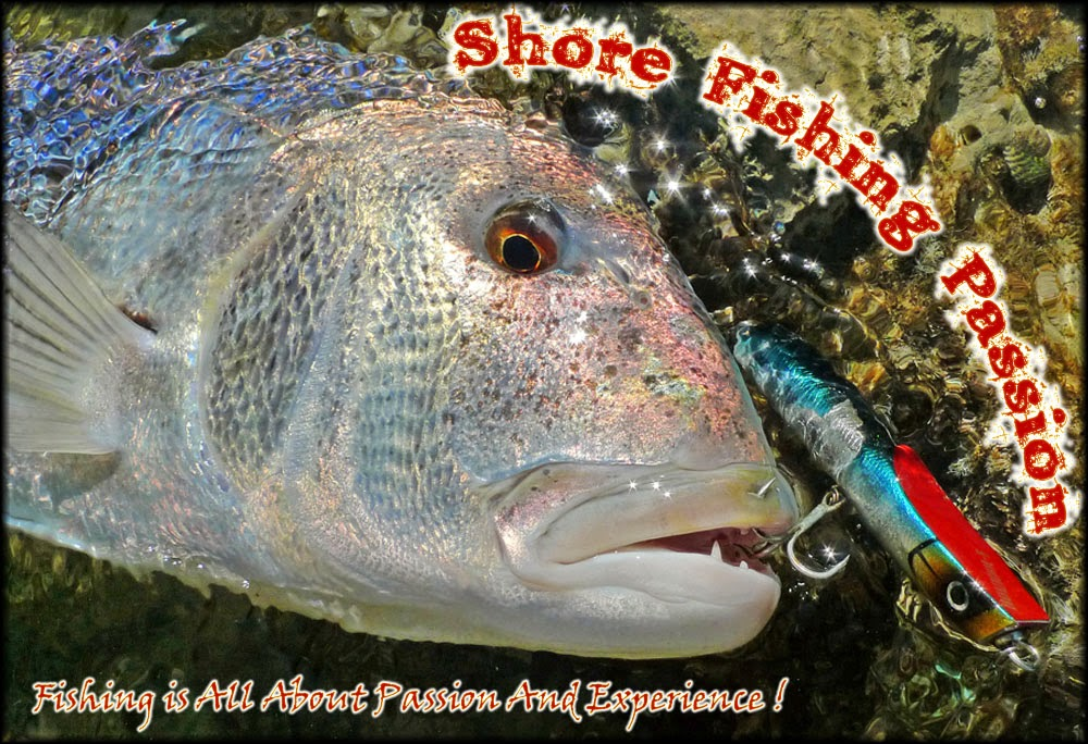 Shore Fishing Passion