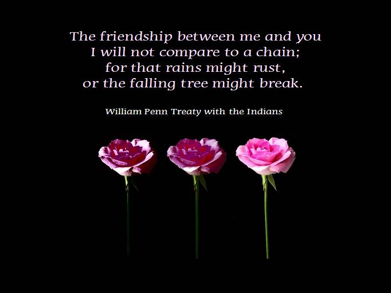 Friendship quotes (Gallery)