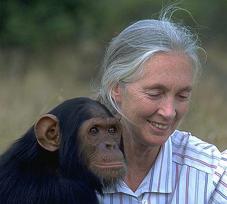Jane Goodall, P... Jane Goodall Death