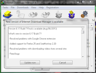IDM 6.17 Build 7 Final Full Version