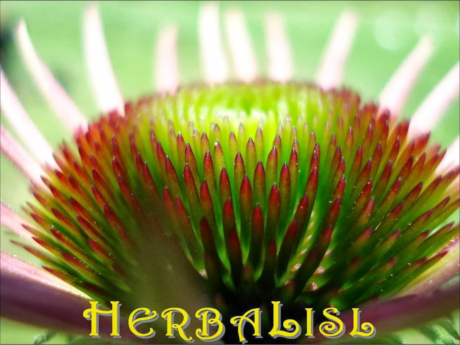 HerbaLisl's Webpage