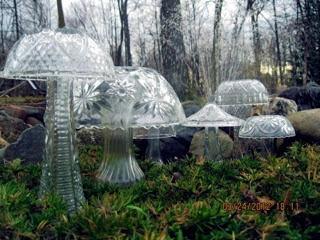 Reciclatex Ensaladeras converidas en un campo de setas