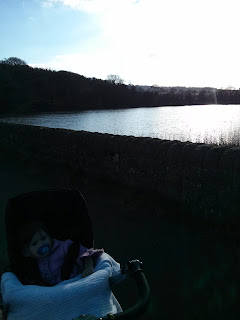 by the lake