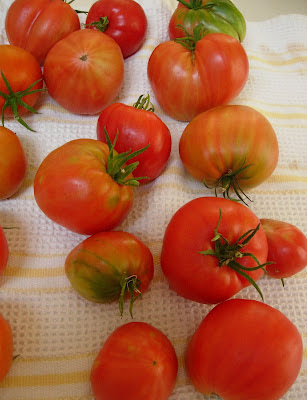 how to tell when black krim tomatoes are ripe