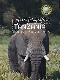Guía de Safaris Fotográficos África.