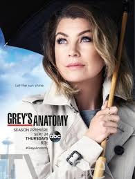 Assistir Grey's Anatomy 14 Temporada Online Dublado e Legendado