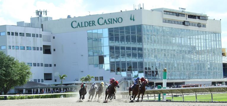 Horseplayers Association Of North America Calder Goes