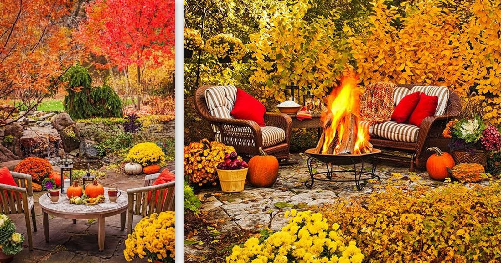 15 roślin pięknych jesienią