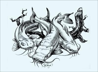 lue catfish, channel catfish and flathead catfish