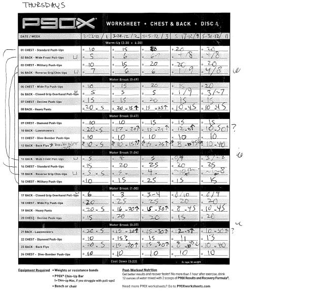 Insanity Workout Excel Worksheet
