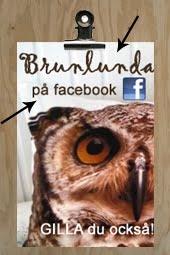 VLKOMMEN TILL BRUNLUNDA! -VRT KRA SOMMARSTLLE P LANDET!