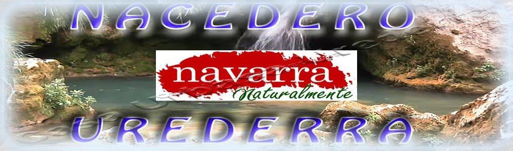 Nacedero  Urederra   Baquedano  El Paraíso del Agua     Navarra